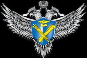 Федеральная служба по надзору в сфере образования и науки и Федеральное агентство по делам молодежи подчинены правительству РФ.
