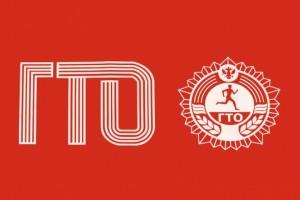 В столичных школах пройдут межрайонные фестивали Всероссийского физкультурно-спортивного комплекса «Готов к труду и обороне»