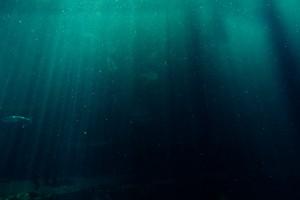 Найденный на морском дне у берегов Балаклавы в Крыму корабль может быть римским торговым судном