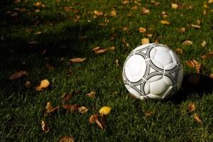 В Москве более 300 тысяч детей посещают спортивные секции
